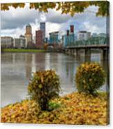 Under The Maple Tree In Portland Oregon During Fall Canvas Print