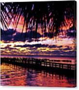 Under The Palms Sunrise Canvas Print