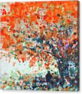 Under The Shade Of The Flamboyant Canvas Print