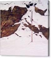 Under The Snow 2 Db Canvas Print