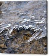 Under The Surface Canvas Print