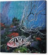Under Water Adventure Canvas Print
