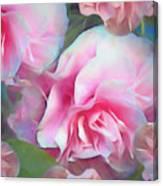 Unfolding Grace 5  Canvas Print
