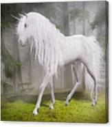 Unicorn In The Forest Canvas Print