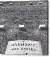 Unknown Bodies Canvas Print