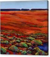 Unknown Plateau Canvas Print