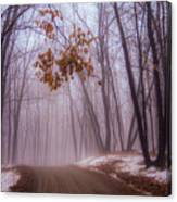 Unknown Road Canvas Print