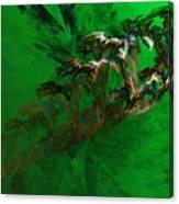 Untitled 01-15-10 Canvas Print