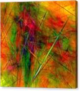 Untitled 0123-10 Canvas Print