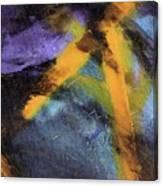 Untitled X 2 Canvas Print