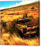 Upcountry Wreck Canvas Print