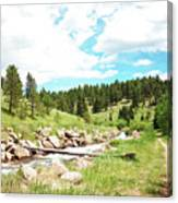 Upcreek  Canvas Print