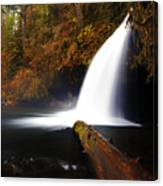 Upper Butte Creek Falls Canvas Print