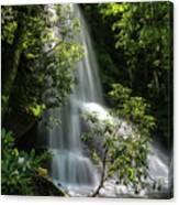 Upper Catawba Falls Canvas Print