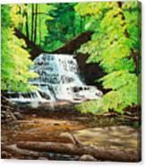 Upper Falls At Salt Springs Canvas Print