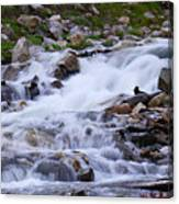 Upper French Creek 2 Canvas Print