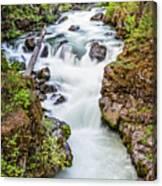 Upper Rogue River Canvas Print