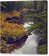 Upper Salamander Creek Canvas Print