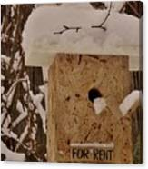 Upscale Bird Loft For Rent Canvas Print