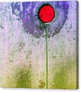 Urban Flower Canvas Print