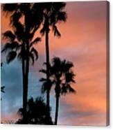 Urban Palms Canvas Print