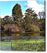 Urieville Pond Canvas Print
