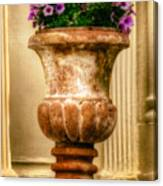 Urn With Purple Flowers Canvas Print