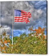 Us Flag 8091 Canvas Print