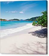 Us Virgin Islands, St. John, Cinnamon Canvas Print