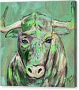 Usf Bull Canvas Print