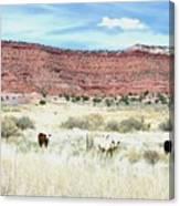 Utah 7 Canvas Print