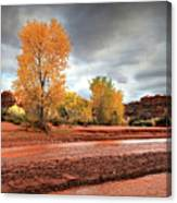 Utah Desert Wash Canvas Print