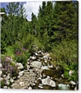 Vail Stream In The Summer 2 Canvas Print