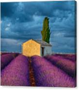 Valensole Shed Canvas Print