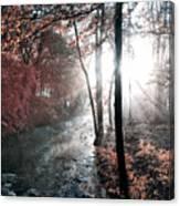 Valley Creek Sunrise Canvas Print