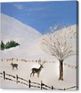 Valley Of Snow Canvas Print