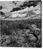 Valley View No.29 Canvas Print