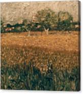 Van Gogh: Arles, 1888 Canvas Print
