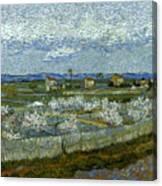 Van Gogh: Peach Tree, 1889 Canvas Print