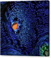 Van Gogh's Clam Canvas Print