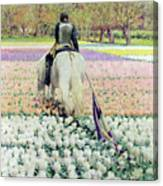 Vanquished Canvas Print
