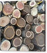 Various Firewood In The Round Canvas Print
