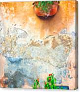 Vase On Decayed Wall Canvas Print