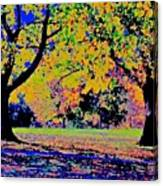 Vasona Two Oaks Fall Canvas Print