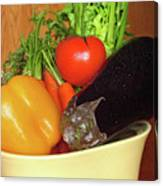 Vegetable Bowl Canvas Print