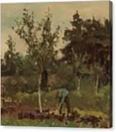 Vegetable, Willem Witsen, 1885 - 1922 Canvas Print