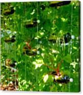 Vegetables Plant For Urban Life 2 Canvas Print