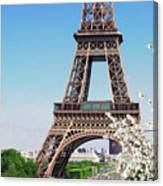 Eiffel Tower And Spring Canvas Print