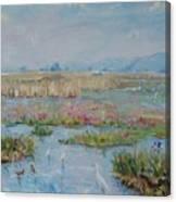 Veldriff Marshes 2011 Canvas Print