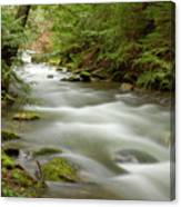 Velvet Stream Canvas Print